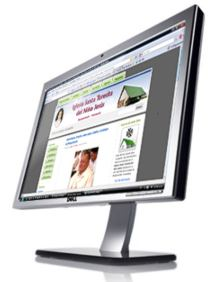 Monitor de ordenador, Web Santa Teresita
