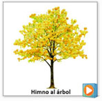 audio_arbol